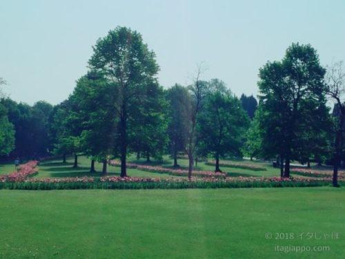 シグルタ公園 芝生