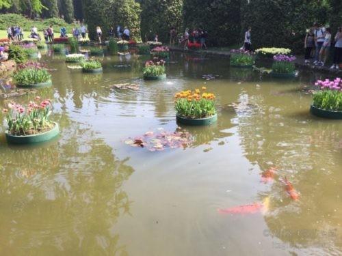 シグルタ公園 池