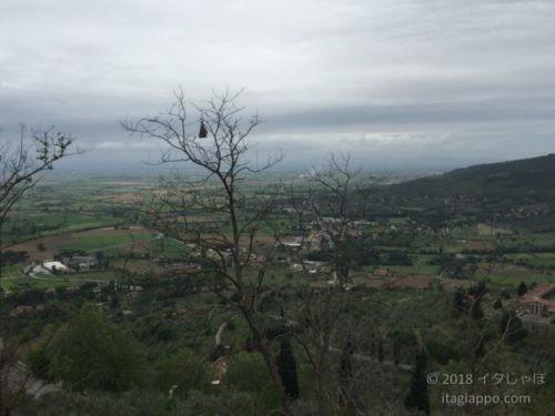 コルトーナからの眺め
