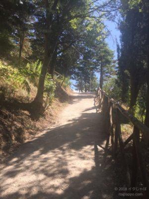 サンレオ城への道