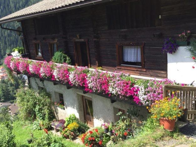カンポ・トゥーレスの家